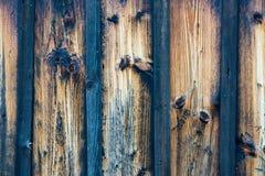 Blaue und braune hölzerne Beschaffenheit Stockfotografie