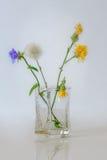 Blaue und gelbe Blumen auf einem blauen Hintergrund Stockfotos