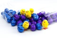Blaue und purpurrote Ostereier mit gelben Küken Lizenzfreies Stockbild