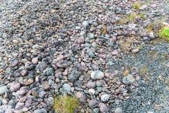 Blaue und rosa Steine auf der Küste des Barentssees, Varanger-Halbinsel, Finnmark, Norwegen Stockbild