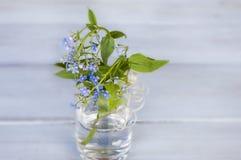 Blaue Vergissmeinnichte in einem transparenten Vase auf einem hölzernen Hintergrund Stockbilder