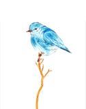 Blaue Vogelwasserfarbzeichnungsillustration auf weißem Hintergrund Stockbilder