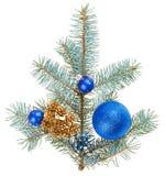 Blaue Weihnachtsdekorationkugeln auf geziertem Zweig lizenzfreies stockfoto