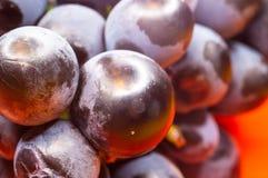 Blaue Weinreben der Beere auf einer roten Untertasse Stockfotografie
