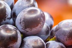 Blaue Weinreben der Beere auf einer roten Untertasse Lizenzfreie Stockbilder
