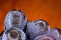 Blaue Weinreben der Beere auf einer roten Untertasse Stockfotos