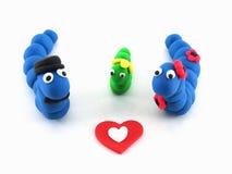 Blaue Werm Paare mit Grünschnabel Stockfotografie