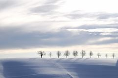 Blaue Winterlandschaft Lizenzfreies Stockbild