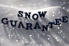 Blaue Wort-Schnee-Garantie, Schneeflocken Lizenzfreie Stockfotos