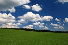 Blauem Himmel do unter de Schwarzwaldwanderung Fotografia de Stock Royalty Free