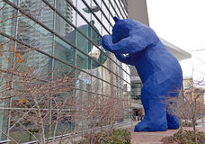 Blauer Bär in dem Denver-Konferenzzentrum Stockbilder