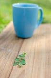 Blauer Becher auf hölzernem Brett mit grünem Gras Lizenzfreie Stockfotografie