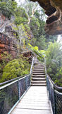 Blauer Berg Australien Stockfotografie