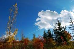 Blauer blauer Himmel Lizenzfreies Stockfoto