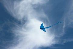 Blauer Drachen Lizenzfreie Stockfotografie