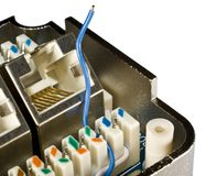 Blauer Ethernet-Draht lizenzfreie stockfotografie