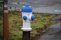 Blauer Feuerhydrant stockfotografie