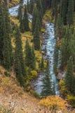 Blauer Fluss Arashan, das in Wald geht Stockfoto