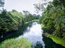 Blauer Fluss/Tulu-Fluss/Niari-Fluss, der Kongo Stockbilder