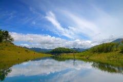 Blauer Fluss-Wald Stockfotografie