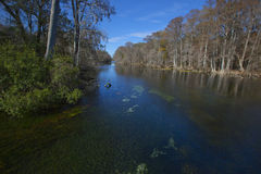 Blauer Frühlings-Park - Santa- Fefluss-Verzweigung Stockfoto