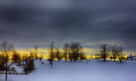 Blauer frostwork Hintergrund und Schwan Stockbilder