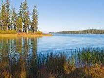 Blauer Gebirgssee mit Bäumen und Gräsern Stockbilder