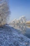 Blauer gefrorener Morgen Stockfotografie