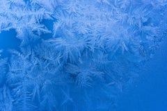 Blauer gefrorener Tracery Lizenzfreie Stockfotografie