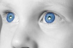 Blauer gemusterter Junge stockbilder