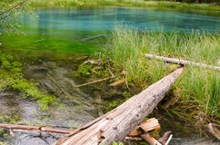 Blauer Geysirsee in Altai-Bergen Stockfotografie