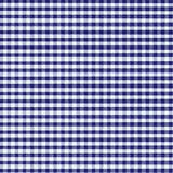 Blauer Gingham Stockfoto