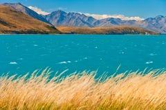 Blauer Gletschersee lizenzfreie stockbilder