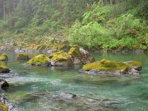 Blauer Green River lizenzfreie stockbilder