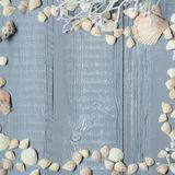 Blauer hölzerner Hintergrund mit Muscheln und Korallen Stockfoto