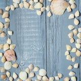 Blauer hölzerner Hintergrund mit Muscheln und Korallen Lizenzfreie Stockbilder