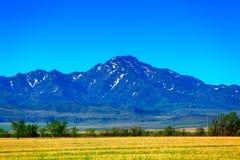 Blauer Himmel über den Bergen und der gelben Steppe Stockfoto