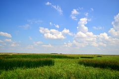 Blauer Himmel Stockbild