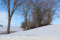 Blauer Himmel-Ackerland Snowy im Südwesten Iowa stockbild