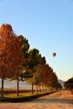 Blauer Himmel-Ballon Lizenzfreie Stockfotos