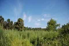 Blauer Himmel an der Tageszeit lizenzfreie stockbilder