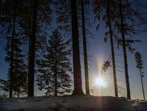 Blauer Himmel in der Winterzeit lizenzfreies stockfoto