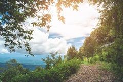Blauer Himmel des Natur-Wanderwegs Stockbilder