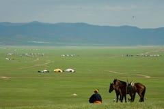Blauer Himmel des Nomaden mit Pferden stockfotografie