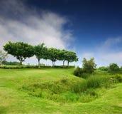Blauer Himmel, grüne Felder stockfotografie