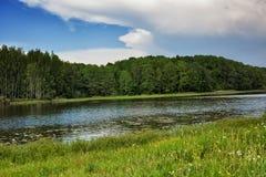 Blauer Himmel, grünes Holz, Fluss und Wiese Lizenzfreie Stockfotografie
