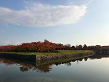 Blauer Himmel mit Baum und die Reflexion des Wassers lizenzfreies stockbild