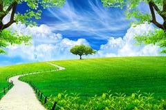 Blauer Himmel mit Sonnenschein und grünem Rasen lizenzfreie stockfotografie