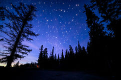 Blauer Himmel mit vielen funkelnde Sterne im Wald Stockfoto