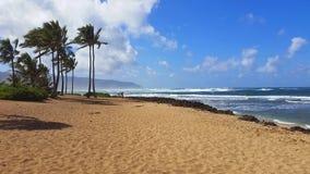 Blauer Himmel mit Wolken mit Palmen auf Strand in Hawaii-Fotografie Stockfotos